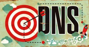 NS1 DNS支持解析记录齐全、NS服务器响应快和统计功能强大