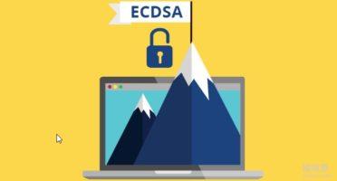 使用ECC和RSA双证书