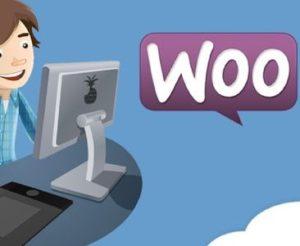 WooCommerce支付测试
