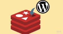 Wordpress使用Redis缓存加速-WP Redis插件,缓存忽略参数以及多站点配置方法